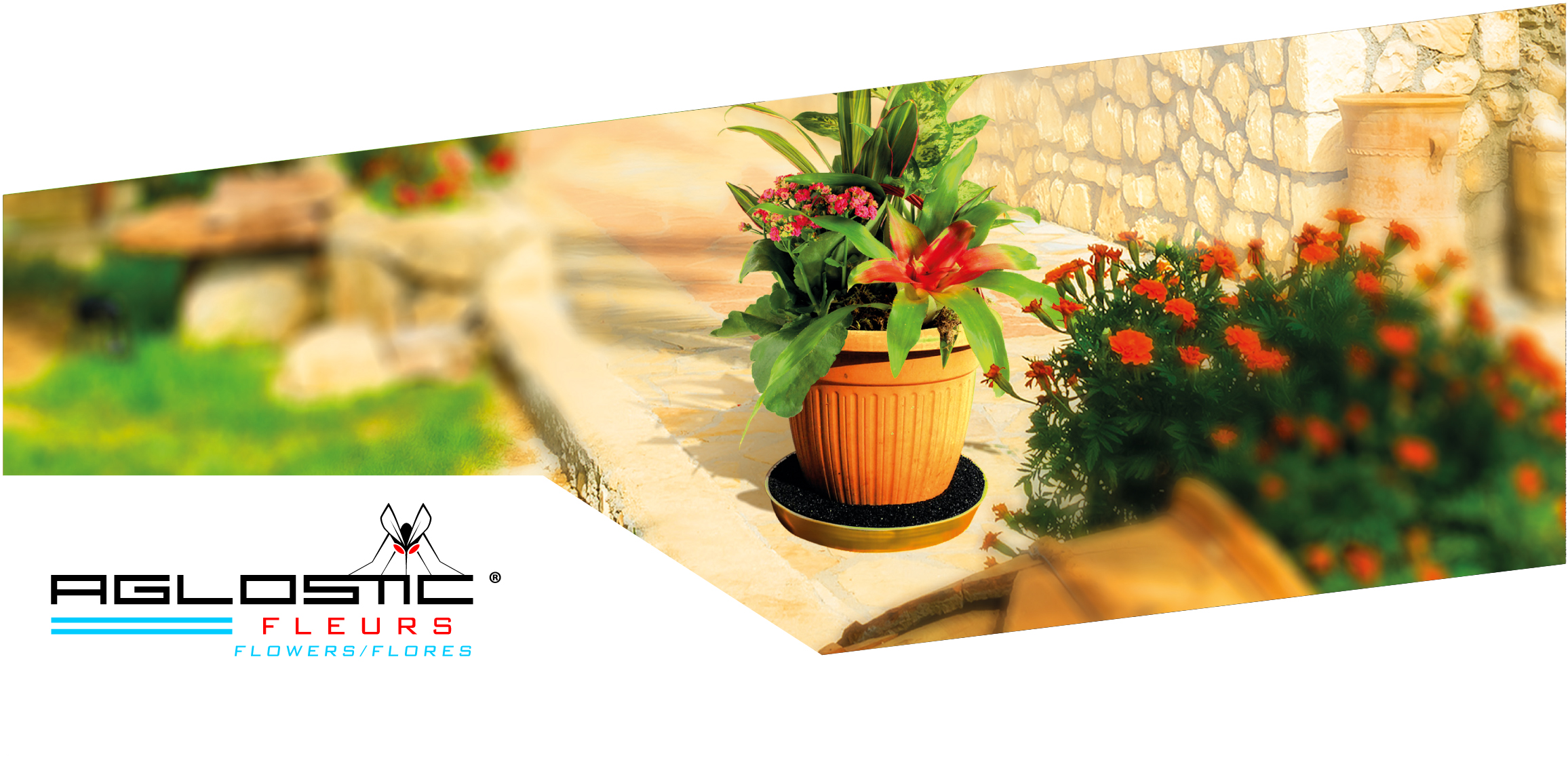 Aglostic® Flowers